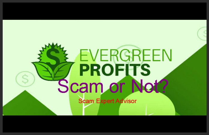Evergreen Profits.