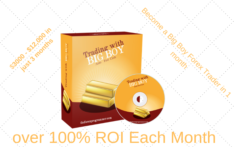 100 roi per month forex